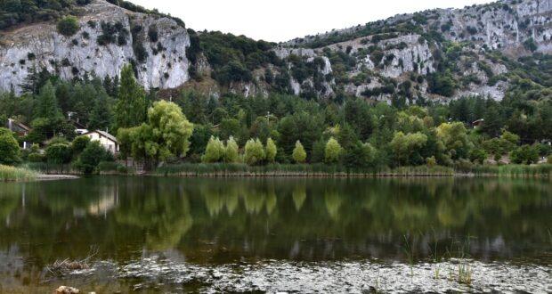 Terapia nelle foreste siciliane per guarire dal COVID-19