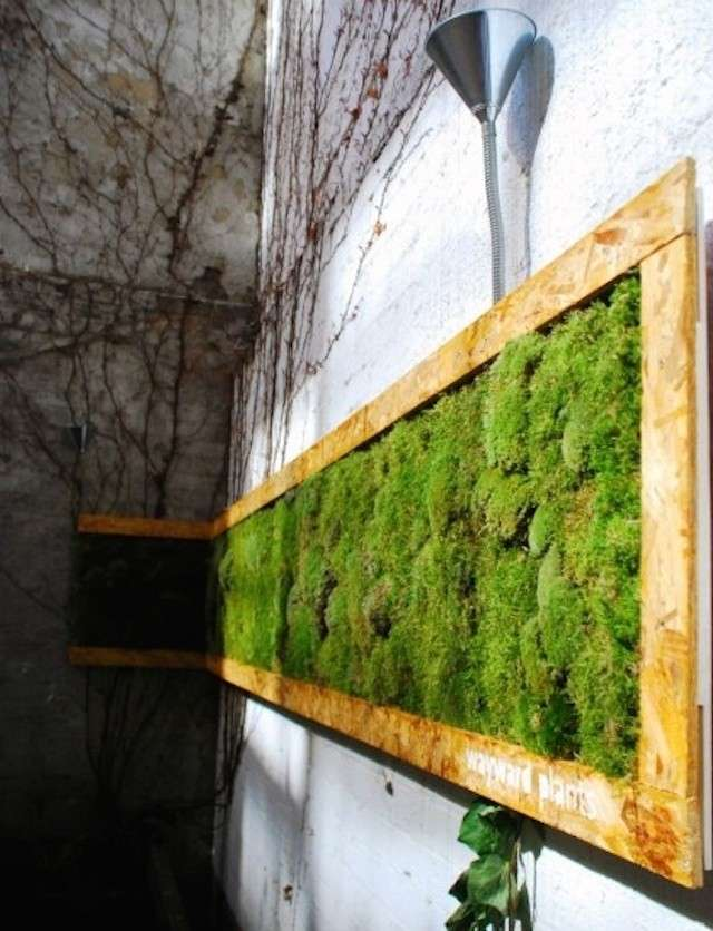 Alfio Sciacca: idee per una Sicilia più verde e più bella
