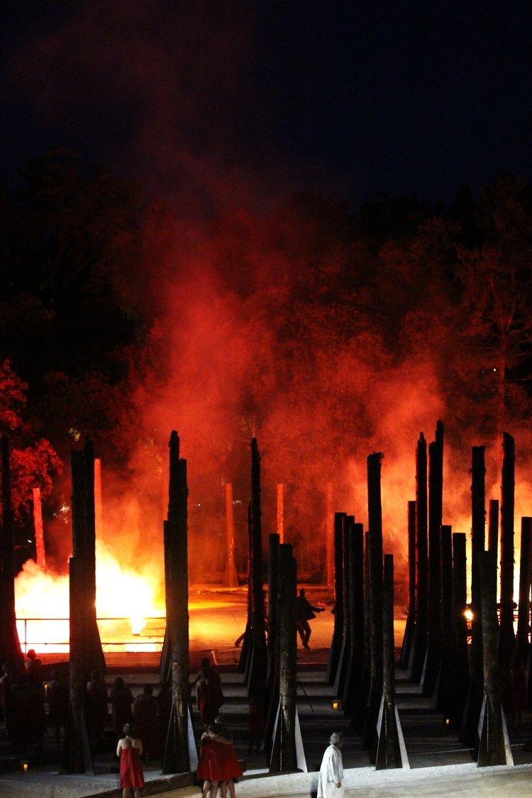 """Verrà piantato a Siracusa il """"Bosco delle Troiane"""", il nuovo polmone verde della città"""